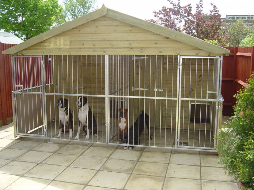 Large dog kennels plastic lumber resources for The dog house kennel